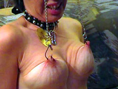 Suspended by the hooks in nipples