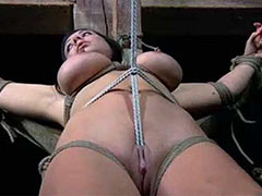 Tied and tortured bitch