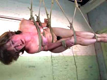 Hog tied all round be required of subjection