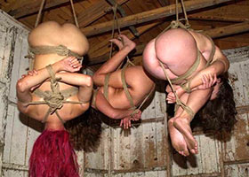 Group suspending of submissive girls