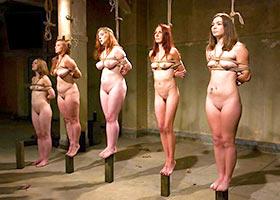 The selection of slaves for a modern BDSM Harem
