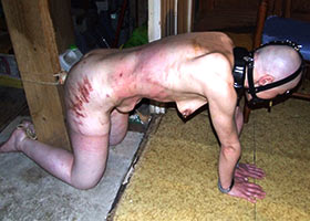 Real slave living in the basement for two years